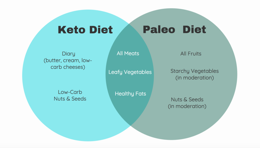 Paleo vs. Ketogenic Diet | Dr. Dave's Emporium